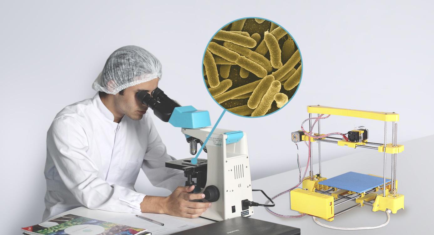 Bacterias Impresas 3D Grafeno Colido Diy